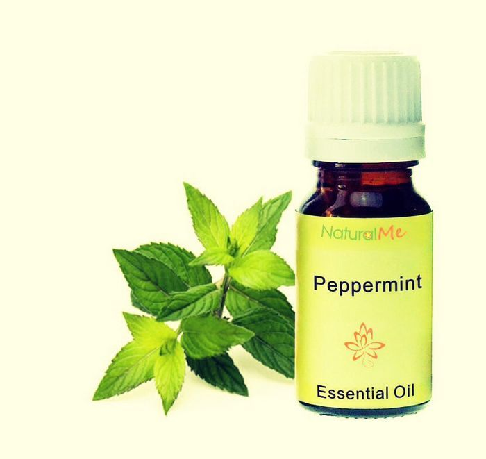 peppermint for headache