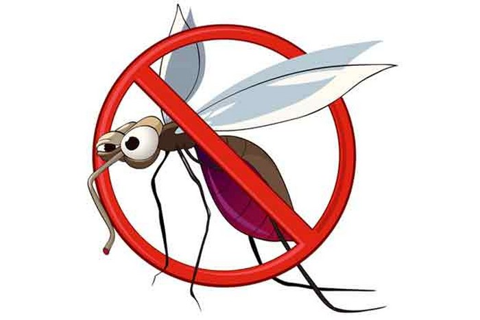 no-mosquito-causing-malaria