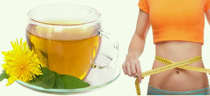 green tea for weight loss-fat cells